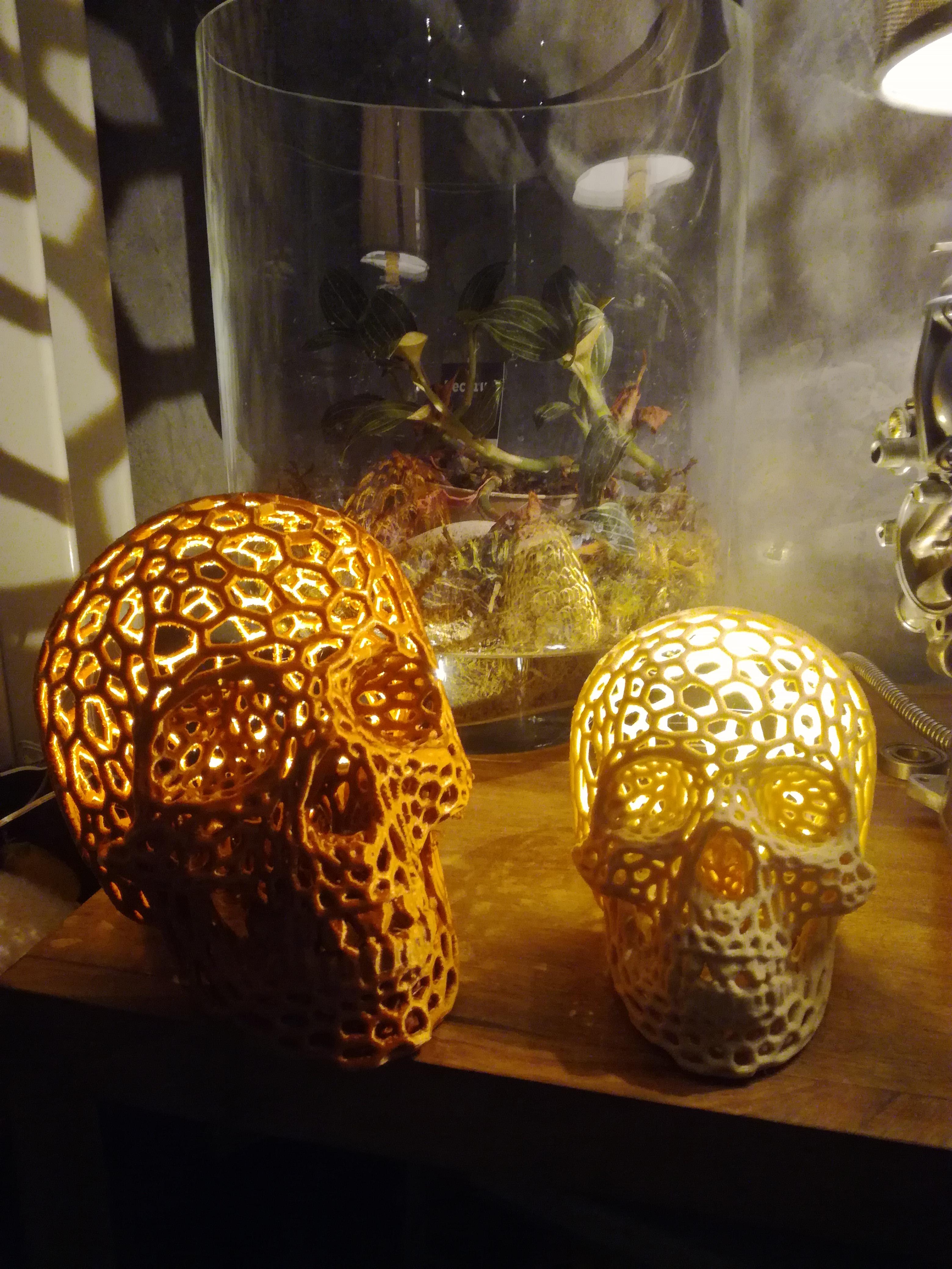 Skull Lamp Voronoi style